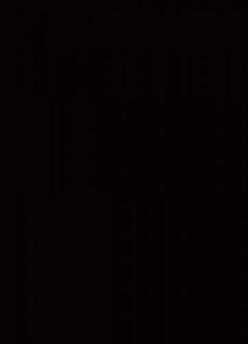 U999 ST2 Čierna perla